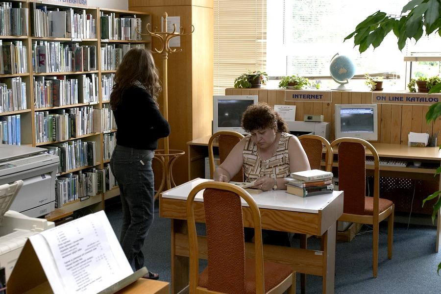 Půjčovna pro dospělé ve společenském domě, 2005